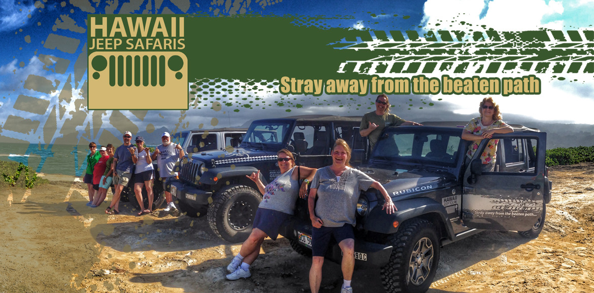 Hawaii Jeep Tours promotional image